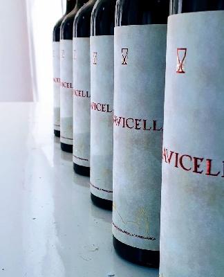 Navicella, vinul iconic al cramei Jelna